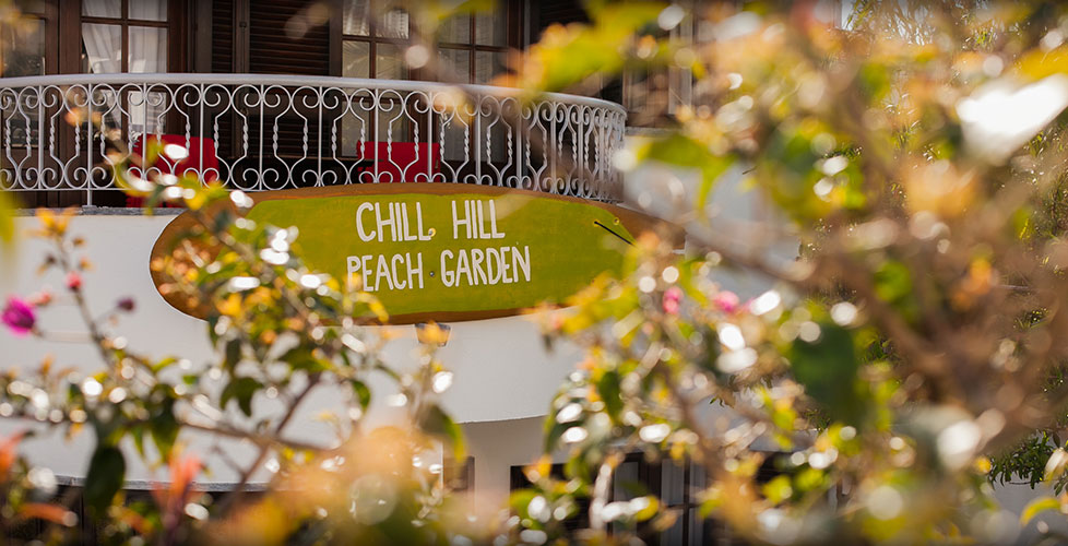chillhill-peachgarden26